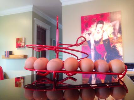 Love our new Egg Skelter!