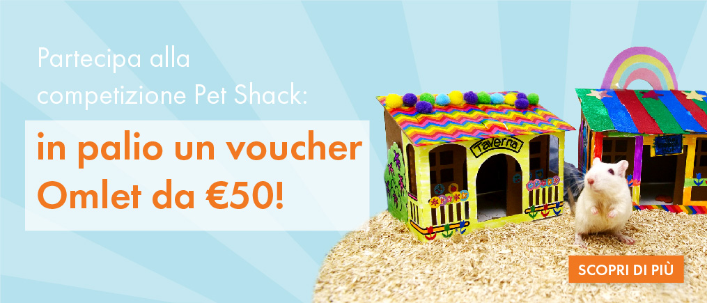 Pet Shack Competition