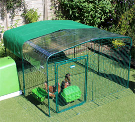 Omlet walk in chicken run with clear and green roof covers.